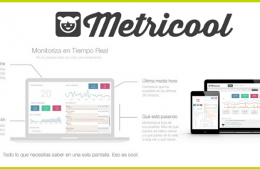 My Consulting-Metricool